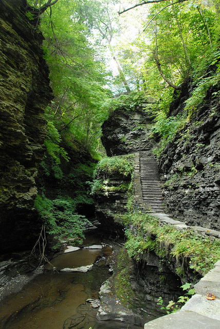 Finger Lakes Watkins Glen