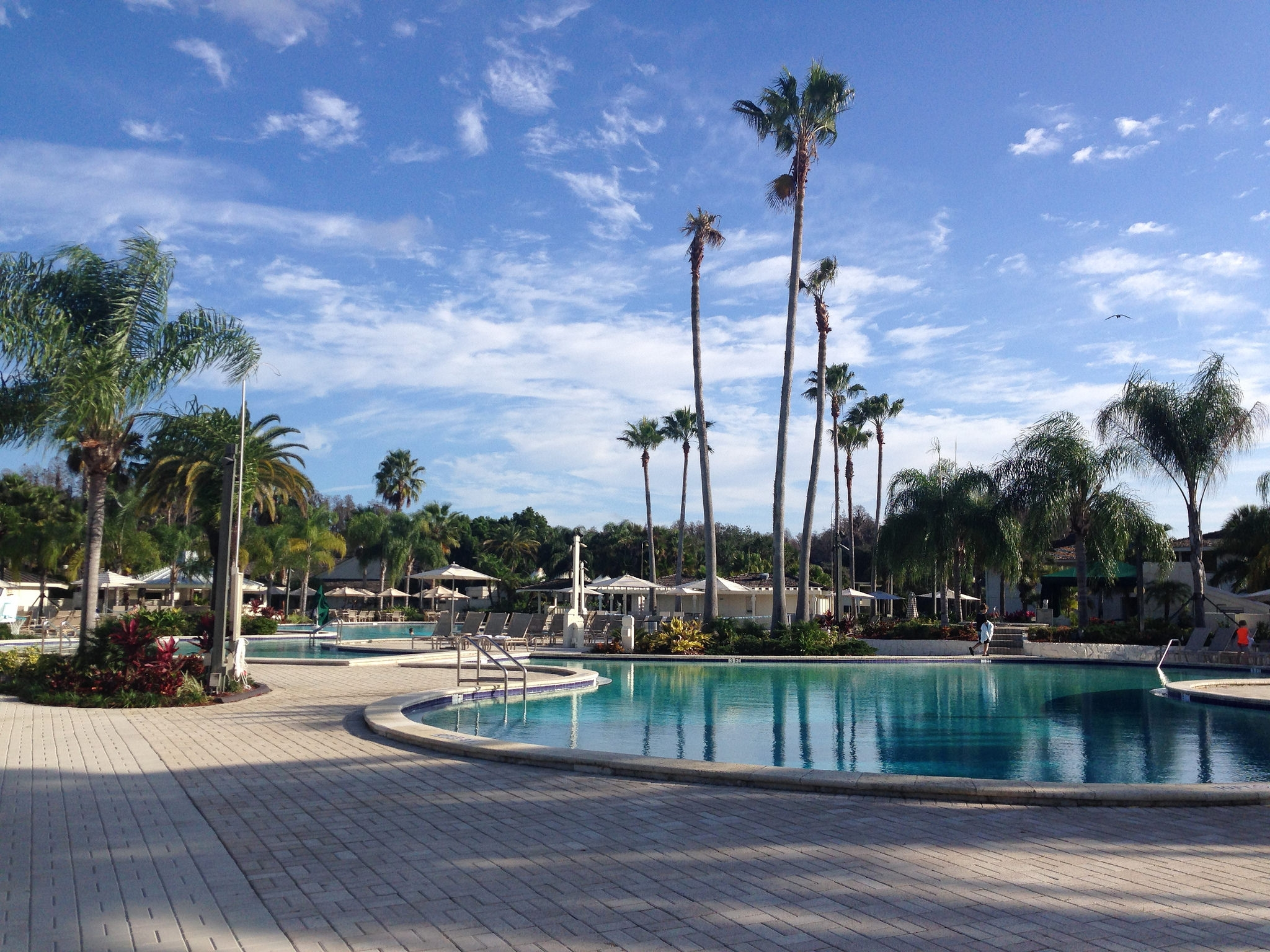 Hotel review saddlebrook resort my view from the middle for Saddelbrook