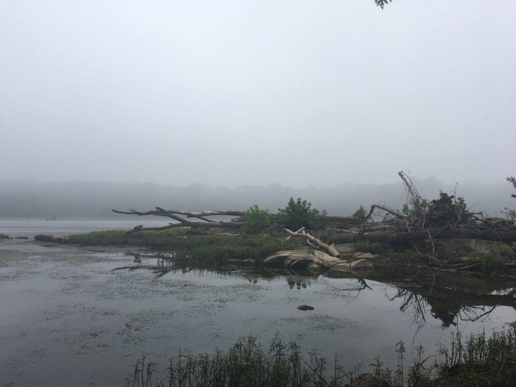 foggy Potomac river